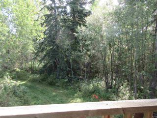 Photo 32: RR 205 Twp Rd 625: Rural Thorhild County House for sale : MLS®# E4212229