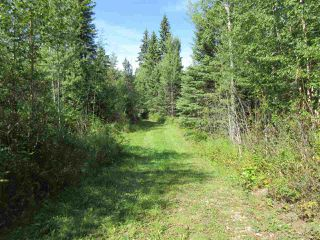 Photo 39: RR 205 Twp Rd 625: Rural Thorhild County House for sale : MLS®# E4212229