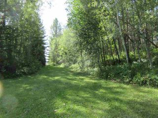 Photo 50: RR 205 Twp Rd 625: Rural Thorhild County House for sale : MLS®# E4212229