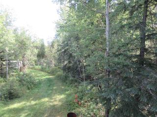 Photo 35: RR 205 Twp Rd 625: Rural Thorhild County House for sale : MLS®# E4212229