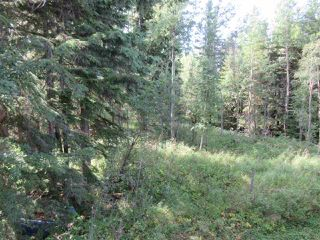 Photo 34: RR 205 Twp Rd 625: Rural Thorhild County House for sale : MLS®# E4212229