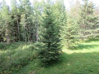 Photo 31: RR 205 Twp Rd 625: Rural Thorhild County House for sale : MLS®# E4212229