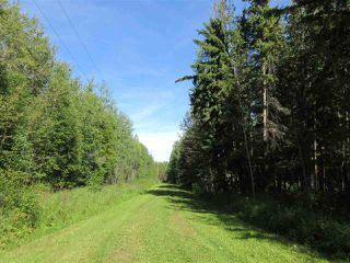 Photo 3: RR 205 Twp Rd 625: Rural Thorhild County House for sale : MLS®# E4212229