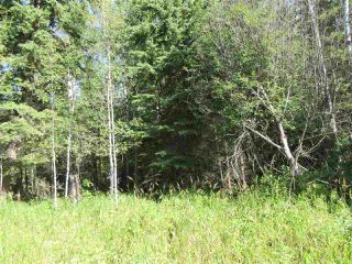 Photo 46: RR 205 Twp Rd 625: Rural Thorhild County House for sale : MLS®# E4212229
