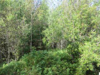 Photo 33: RR 205 Twp Rd 625: Rural Thorhild County House for sale : MLS®# E4212229
