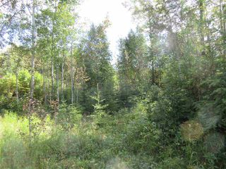 Photo 37: RR 205 Twp Rd 625: Rural Thorhild County House for sale : MLS®# E4212229