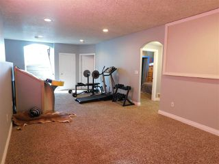 Photo 29: 44 Landing Trails Drive: Gibbons House for sale : MLS®# E4202698