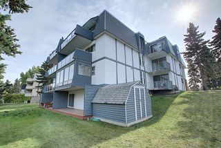 Photo 28: 1 312 CEDAR Crescent SW in Calgary: Spruce Cliff Apartment for sale : MLS®# A1036896