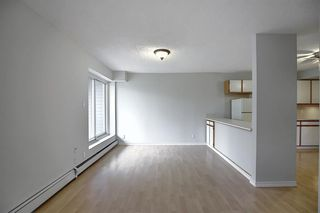 Photo 12: 1 312 CEDAR Crescent SW in Calgary: Spruce Cliff Apartment for sale : MLS®# A1036896