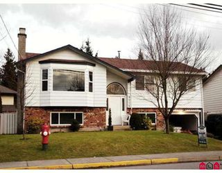 Photo 1: 9016 204TH Street in Langley: Walnut Grove House for sale : MLS®# F2800177