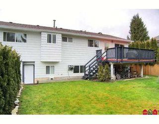 Photo 9: 9016 204TH Street in Langley: Walnut Grove House for sale : MLS®# F2800177