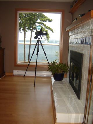 Photo 12: 5777 ISLAND S HWY in UNION BAY: Other for sale : MLS®# 280170