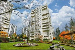 Main Photo: 206 4105 MAYWOOD Street in Burnaby: Metrotown Condo for sale (Burnaby South)  : MLS®# R2424987