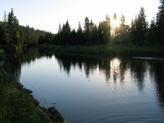 Photo 14: ON Highway 27: Rural Mountain View County Land for sale : MLS®# A1012349