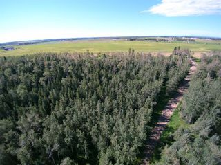 Photo 6: ON Highway 27: Rural Mountain View County Land for sale : MLS®# A1012349