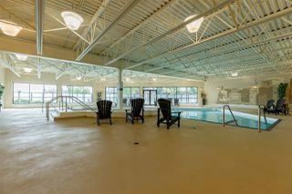 Photo 36: 340 7825 71 Street in Edmonton: Zone 17 Condo for sale : MLS®# E4216827