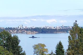 Photo 37: 300 Milburn Dr in : Co Lagoon House for sale (Colwood)  : MLS®# 862707