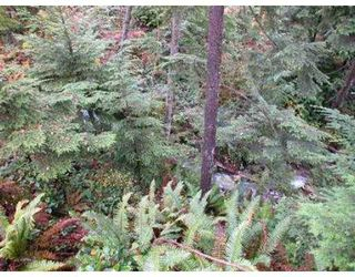 Photo 8: 708 SPENCE WY: Anmore Land for sale (Port Moody)  : MLS®# V564796