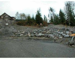 Photo 4: 708 SPENCE WY: Anmore Land for sale (Port Moody)  : MLS®# V564796