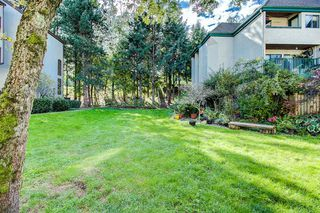 """Photo 20: 4 365 GINGER Drive in New Westminster: Fraserview NW Condo for sale in """"FRASER MEWS"""" : MLS®# R2409781"""
