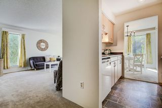 "Photo 9: 4 365 GINGER Drive in New Westminster: Fraserview NW Condo for sale in ""FRASER MEWS"" : MLS®# R2409781"