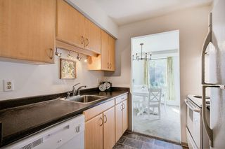 "Photo 6: 4 365 GINGER Drive in New Westminster: Fraserview NW Condo for sale in ""FRASER MEWS"" : MLS®# R2409781"