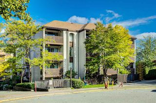 "Photo 19: 4 365 GINGER Drive in New Westminster: Fraserview NW Condo for sale in ""FRASER MEWS"" : MLS®# R2409781"