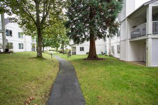 Photo 18: 3 12916 17 Avenue in Surrey: Crescent Bch Ocean Pk. Townhouse for sale (South Surrey White Rock)  : MLS®# R2453078