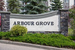 Photo 21: 420 33 ARBOUR GROVE Close NW in Calgary: Arbour Lake Apartment for sale : MLS®# A1012113