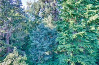 "Photo 9: 408 3690 BANFF Court in North Vancouver: Northlands Condo for sale in ""PARK GATE MANOR"" : MLS®# R2481410"