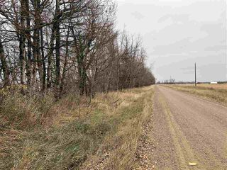 Photo 16: Twp Rd 583 Rge Rd 271: Rural Westlock County Rural Land/Vacant Lot for sale : MLS®# E4218422