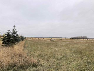 Photo 4: Twp Rd 583 Rge Rd 271: Rural Westlock County Rural Land/Vacant Lot for sale : MLS®# E4218422