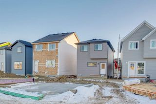 Photo 35: 2957 Coughlan Green in Edmonton: Zone 55 House for sale : MLS®# E4223548