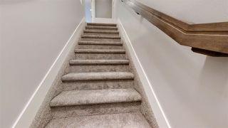 Photo 25: 9731 161 Street NW in Edmonton: Zone 22 House for sale : MLS®# E4224591