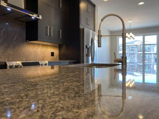 Photo 16: 9731 161 Street NW in Edmonton: Zone 22 House for sale : MLS®# E4224591