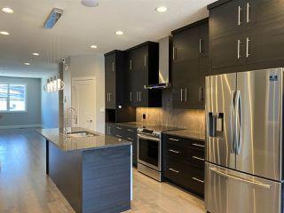 Photo 15: 9731 161 Street NW in Edmonton: Zone 22 House for sale : MLS®# E4224591