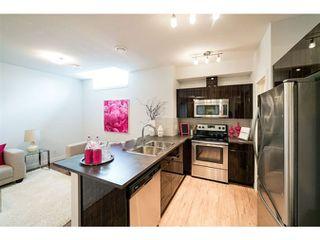 Photo 25: 1303 GRAYDON HILL Way in Edmonton: Zone 55 House for sale : MLS®# E4165518