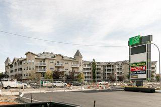 Photo 29: 111 8215 84 Avenue NW in Edmonton: Zone 18 Condo for sale : MLS®# E4174962