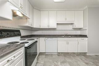 Photo 4: 111 8215 84 Avenue NW in Edmonton: Zone 18 Condo for sale : MLS®# E4174962