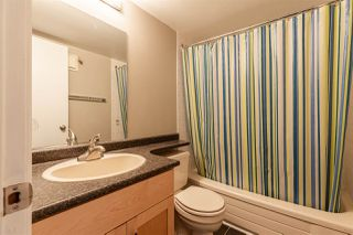 Photo 17: 16 10160 119 Street in Edmonton: Zone 12 Condo for sale : MLS®# E4200093