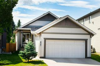 Photo 1: 166 VALLEYVIEW Court SE in Calgary: Dover Detached for sale : MLS®# A1023762