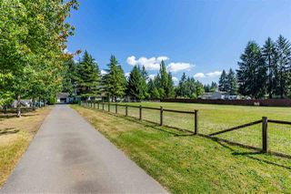 Photo 6: 5254 242 Street in Langley: Salmon River House for sale : MLS®# R2486180