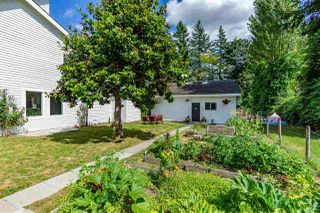 Photo 34: 5254 242 Street in Langley: Salmon River House for sale : MLS®# R2486180