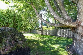 Photo 33: 381 Denman St in : CV Comox (Town of) House for sale (Comox Valley)  : MLS®# 858909