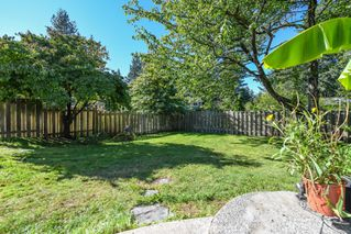 Photo 36: 381 Denman St in : CV Comox (Town of) House for sale (Comox Valley)  : MLS®# 858909