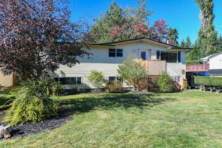 Photo 41: 381 Denman St in : CV Comox (Town of) House for sale (Comox Valley)  : MLS®# 858909