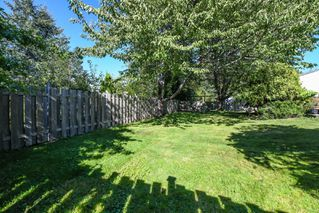 Photo 35: 381 Denman St in : CV Comox (Town of) House for sale (Comox Valley)  : MLS®# 858909
