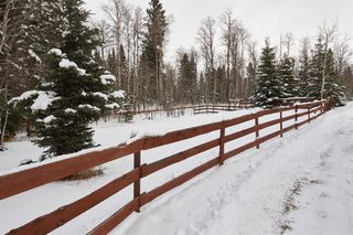 Photo 24: 16 5242 Township Road 290: Rural Mountain View County Detached for sale : MLS®# A1042928