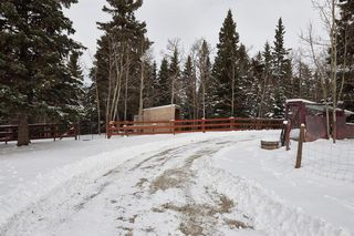 Photo 25: 16 5242 Township Road 290: Rural Mountain View County Detached for sale : MLS®# A1042928