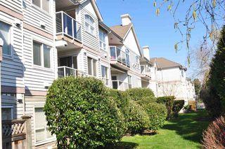 Photo 20: 307 12769 72 AVENUE in Surrey: West Newton Condo for sale : MLS®# R2384339